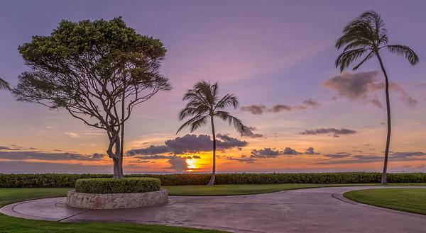 Ko'olina Tree sunset 2