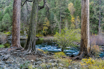 Merced River Scene - D810 - NonSignature-