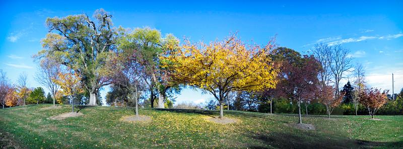 Fall at Faust Park