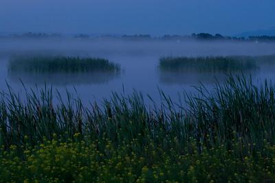 Islands in the Fog - Lee Metcalf Wildlife Preserve, Montana