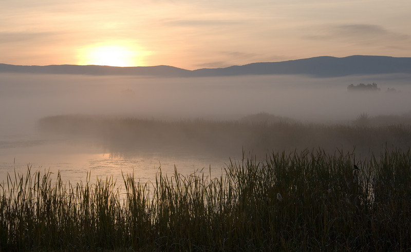 Foggy Morning Sunrise over the Pond - Lee Metcalf Wildlife Preserve, Montana