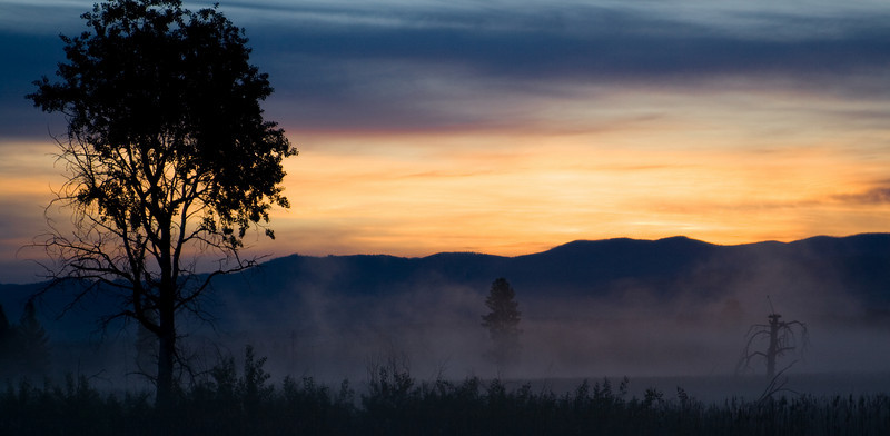 Three Tree Summer Sunrise - Lee Metcalf Wildlife Preserve, Montana