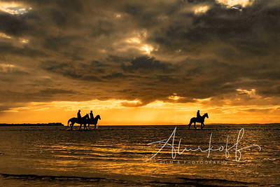 Sunrise-ocean-horse-ride-(369-of-1)