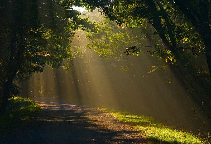 """God Beams,"" Shenandoah National Park"