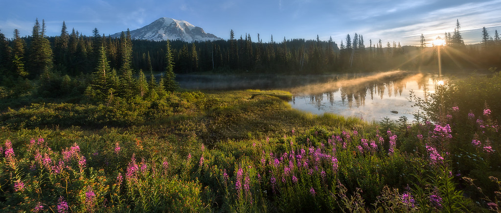 Photo of wildflowers and the sun rising at reflection lakes at Mount Rainier National Park, Washington state
