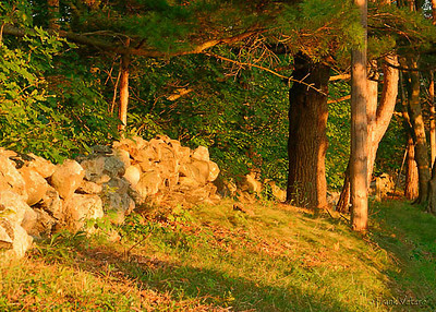 Old Farmers Stone Wall at Sunset, West Newbury, Massachusetts