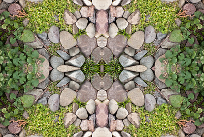 A unique mandala inspired nature photograph.