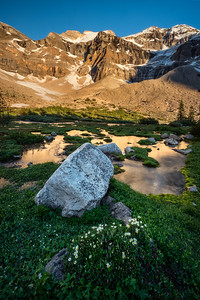 On a Glacial Meadow
