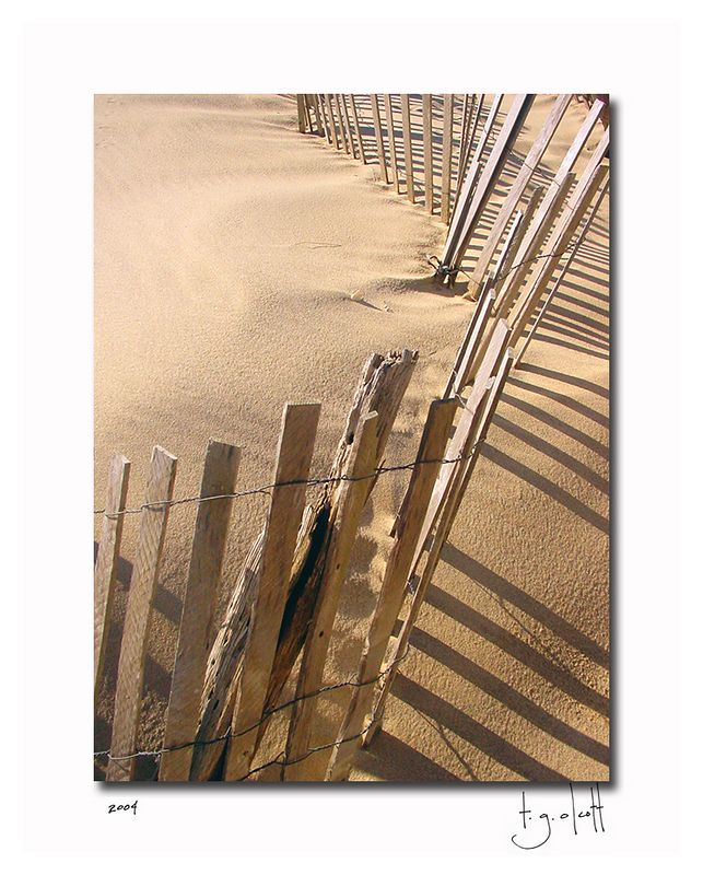 Surfside Fence, May 2004