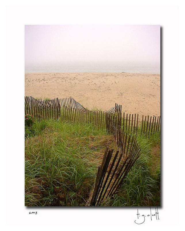 Low Beach, June 2003