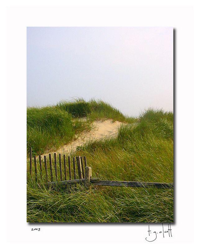 Madaket Dunes, July 2003