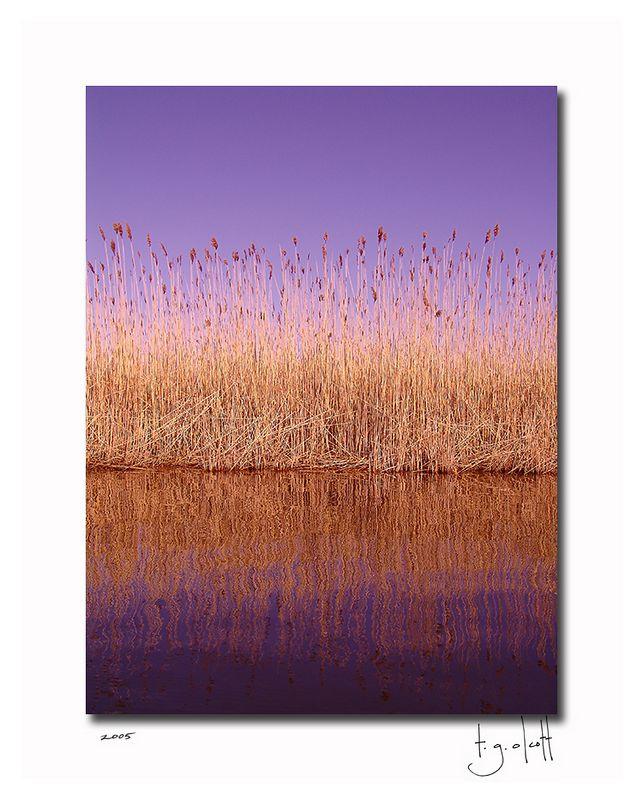 Long Pond