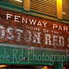 Fenway Bricks