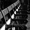 Fenway Park (10)