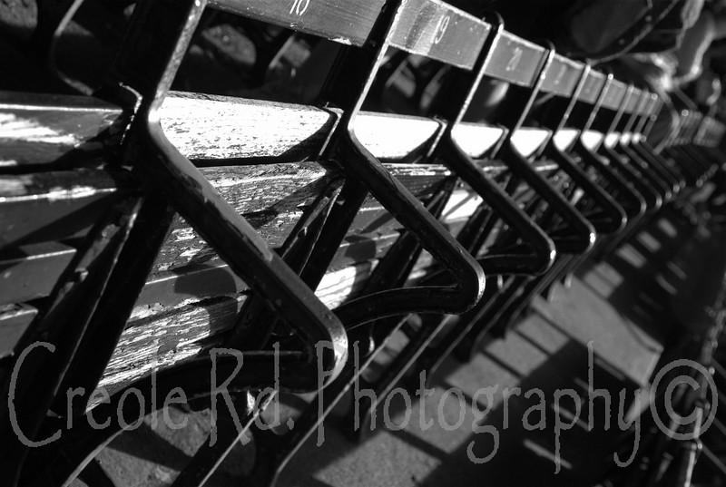 Fenway Park (7)