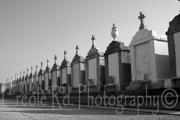 city of the dead (Black and White)