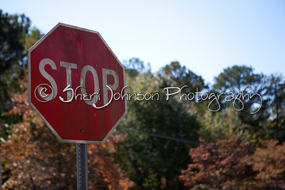 STOP sign against the autumn leaves in Georgia