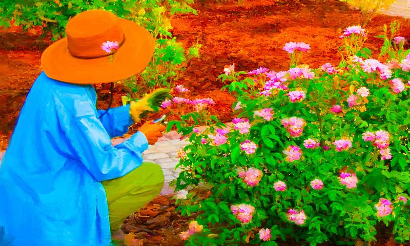 Roser gardener 2-1