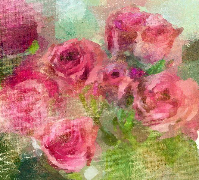 Rose buds close up copy
