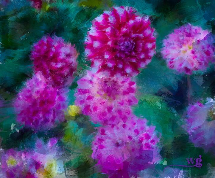 Dahlias of Monet's Garden Texture