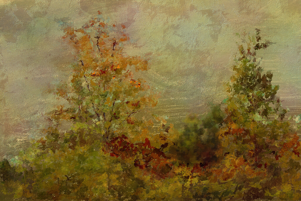 Golden Leaves Back Yard_007text