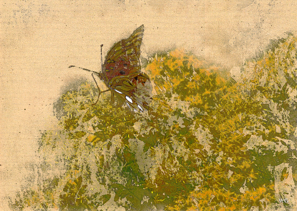 Butterfly on Wildflowers water color