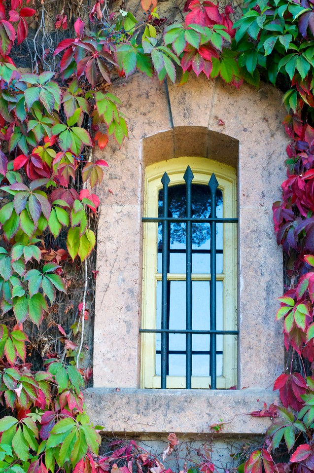 Door_Window 8