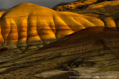 Painted Hills Bathed in Soft Light