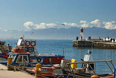 Fishing boats in Kalk Bay, Cape, South Africa