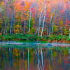 Vermont Pond Reflection