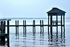 Potomac Shore