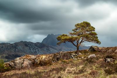 Scotland 2013-167