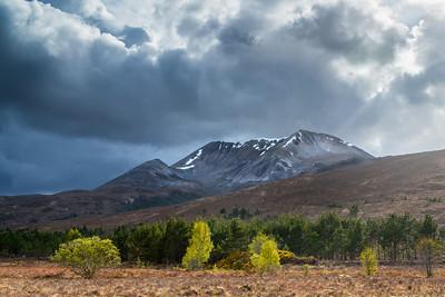 Scotland 2013-168