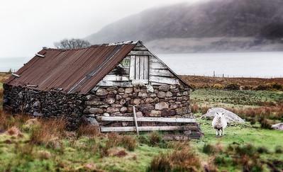 Scotland 2013-110