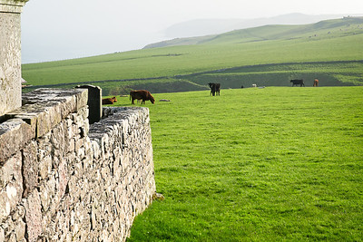 Scotland 2013-133