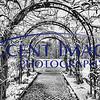 Inniswood Garden BW edited