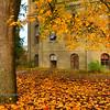 Fall at Deady Hall
