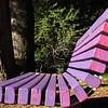 The Magenta Bench