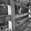 Fence at Alton Baker Park (Agfa Pro version)