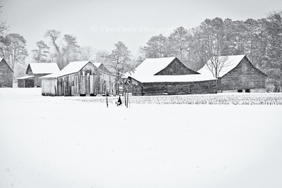 Winter snow blankets Windsor Castle Farm in Smithfield, VA