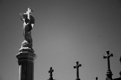 Anjo da Trindade, Agromonte, O Porto