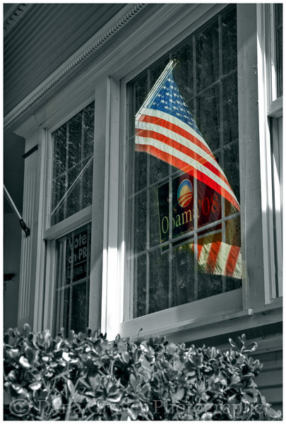 Flag and Obama '08