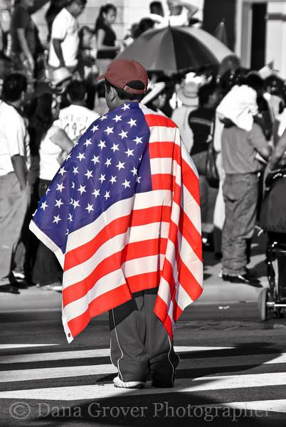 Flag, Demonstration