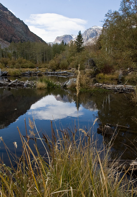 Lundy canyon Beaver pond - thank God we had some clouds today!