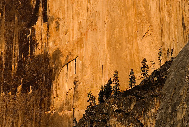 Half Dome Detail