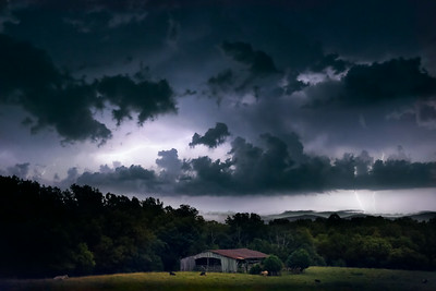 Summer Storms on the Pasture 1