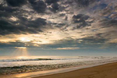 Waking from an OBX Dream
