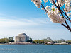 Jefferson Memorial on Tidal Basin IMG_4654