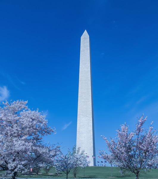 Washington DC-4619