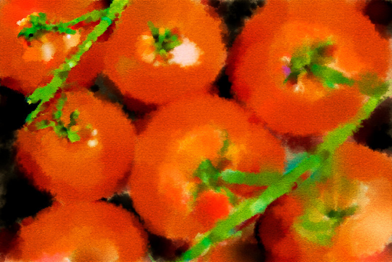 _WIN1728 water color tomatoesSM
